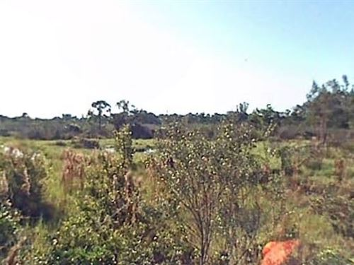 Brevard County, Fl $34,000 Neg : Malabar : Brevard County : Florida