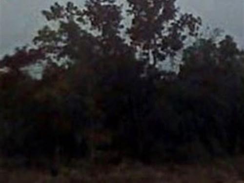 Jackson County, Fl $32,000 Neg : Marianna : Jackson County : Florida
