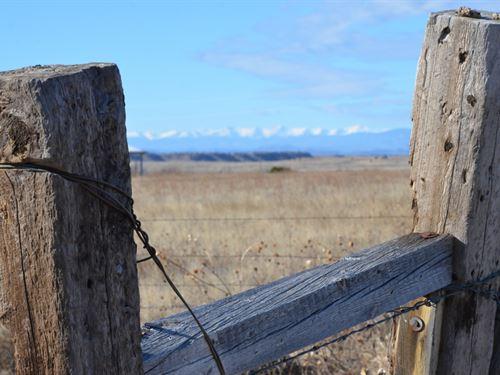 80 Acres In Model, CO : Model : Las Animas County : Colorado