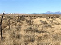 40 Acres In Model, CO : Model : Las Animas County : Colorado