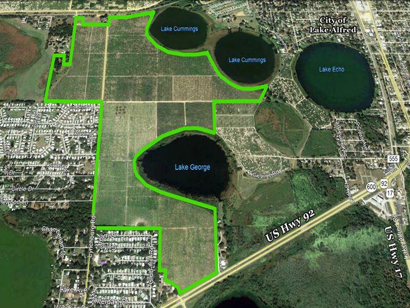 Lynchburg Residential Development : Lake Alfred : Polk County : Florida