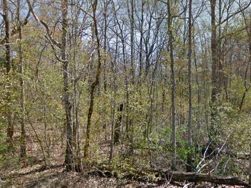 Cumberland County, 32,000 Neg : Crossville : Cumberland County : Tennessee