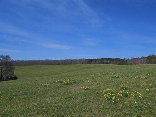 Oak Tree Farm : Louisa : Virginia