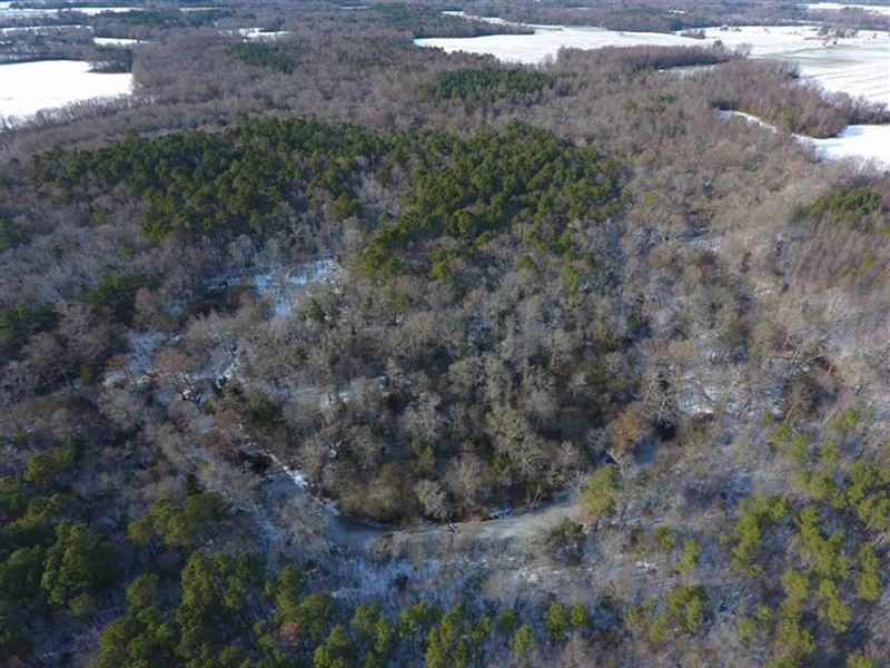 Under Contract, 25.25 Acres of Cr : Pinetops : Edgecombe County : North Carolina