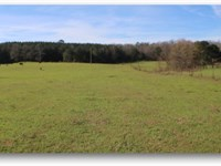 303 Acres In Leake County : Carthage : Leake County : Mississippi