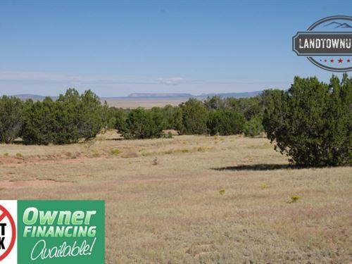 1.02 Acre With Trees & Views Se : Seligman : Yavapai County : Arizona