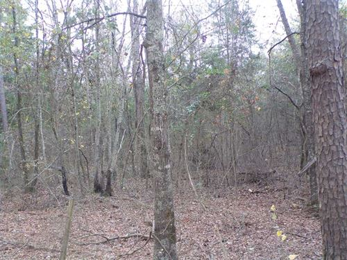 Recreational Hunting Getaway on Wa : Rattan : Pushmataha County : Oklahoma