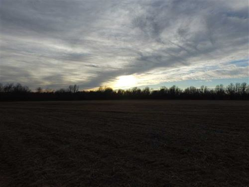 80 Acre Hunt/Crop Farm For Sale in : Melrose : Cherokee County : Kansas