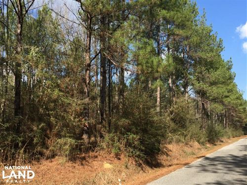 Timber Investment Tract Near Petal : Ovett : Perry County : Mississippi