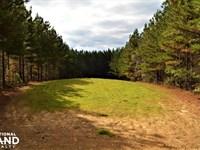 Blackwater Creek Recreation And Tim : Lynn : Winston County : Alabama