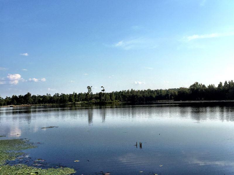 Fortner Mill Pond : Wrightsville : Johnson County : Georgia