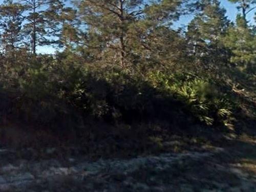 Highlands County, Fl $29,999 Neg : Lake Placid : Highlands County : Florida