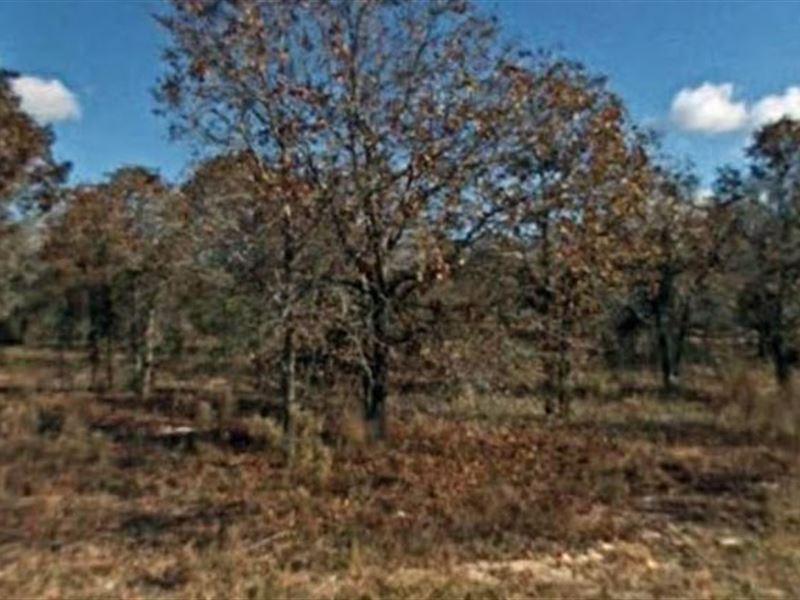 Marion County, Fl $30,000 Neg : Dunnellon : Marion County : Florida