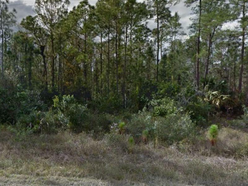 Lee County, Fl $32,000 Neg : Lehigh Acres : Lee County : Florida