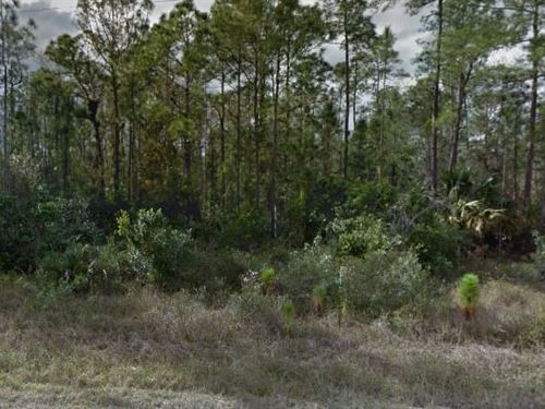 Lee County, Fl $32,000 Neg : Lehigh Acres : Lee County : Florida