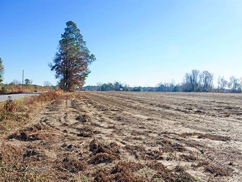 Sc Farmland W/ Solar Potential : Marion : South Carolina