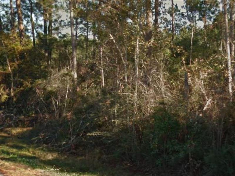 Escambia County, Fl $12,000 Neg : Pensacola : Escambia County : Florida