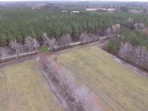 Hunting Tract For Sale Beaufort Co. : Chocowinity : Beaufort County : North Carolina