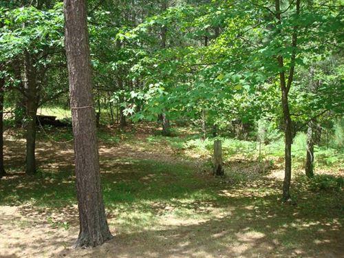 Mls 162167 - Nicely Wooded Lot : Hazelhurst : Oneida County : Wisconsin