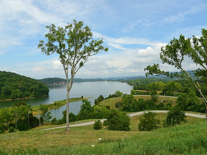 Cherokee Lake Lot With Boat Slip : Russellville : Hamblen County : Tennessee
