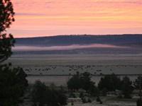 Langell Valley Homestead Ranch : Bonanza : Klamath County : Oregon
