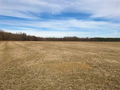 Under Contract, 62.5 Acres of Far : Stantonsburg : Wayne County : North Carolina