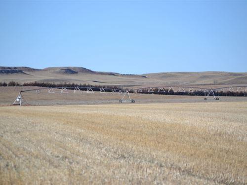 Diffendaffer Pivot Irrigated, Pastu : Potter : Cheyenne County : Nebraska