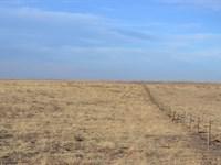Barnesville, Co Crp Land For Sale : Barnesville : Weld County : Colorado