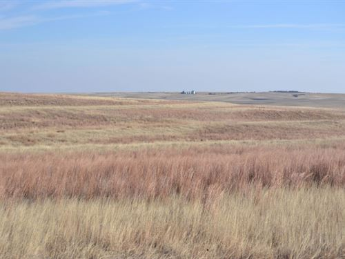 Sunol, Ne Crp Land For Sale : Sunol : Cheyenne County : Nebraska