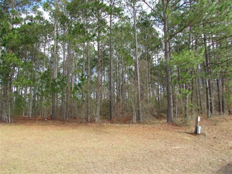 2 Acre Residential Lot in Colquitt : Moultrie : Colquitt County : Georgia