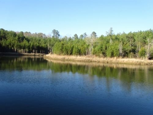 95 Acres In Choctaw County : Ackerman : Choctaw County : Mississippi