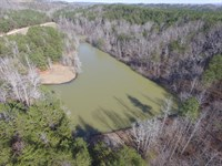 Private 200+/- Ac Farm/Lake/Pasture : Oneonta : Blount County : Alabama