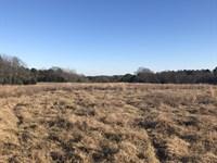 Longstreet Farms : Elberton : Elbert County : Georgia