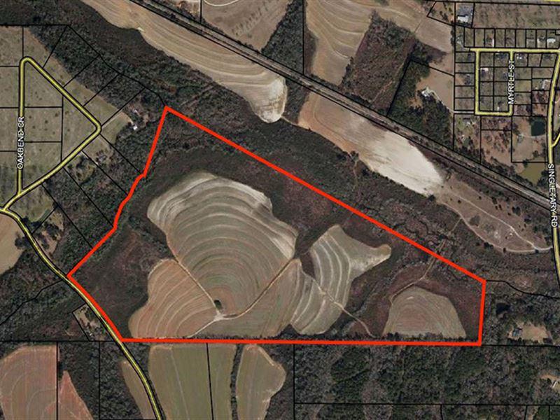Grady Farm : Cairo : Grady County : Georgia