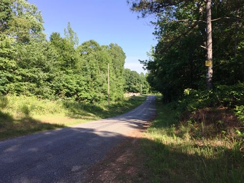 Yellow Springs Tract - Tract 1569 : Yellow Springs : Decatur County : Tennessee