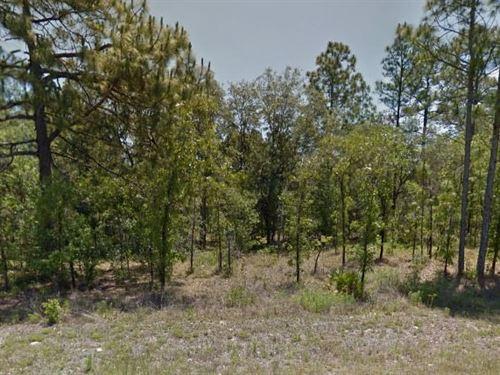 Marion County, Fl $32,000 Neg : Dunnellon : Marion County : Florida