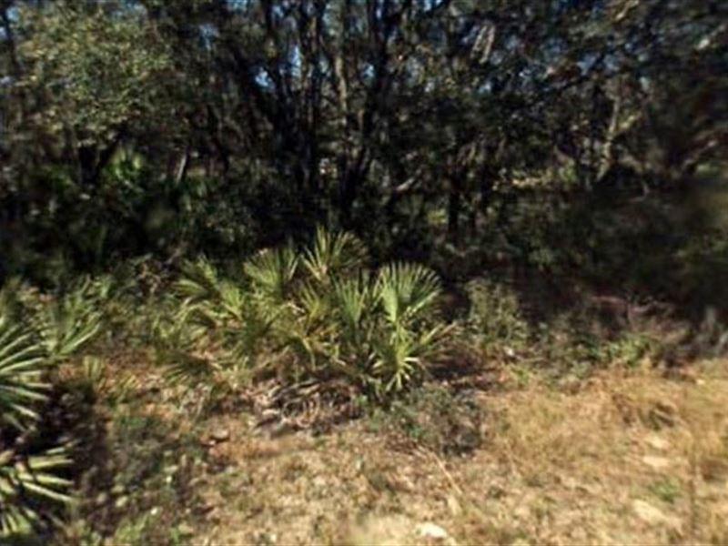 Highlands County, Fl $30,000 Neg : Avon Park : Highlands County : Florida