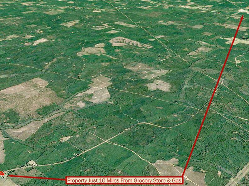 1 Acre Lot On Open Louisiana Land : Bienville : Bienville Parish : Louisiana