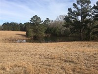165 Acres And Camp Franklin Co : Smithdale : Franklin County : Mississippi