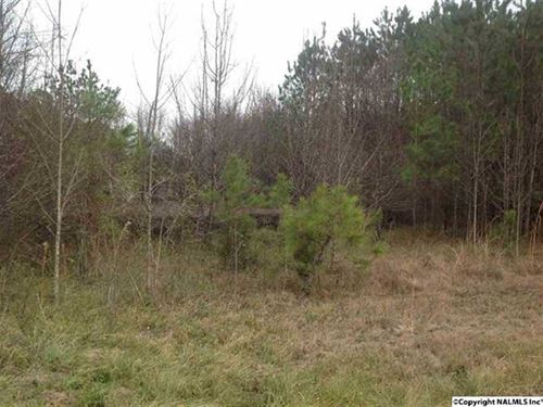 Business And Residential Lot For : Hokes Bluff : Etowah County : Alabama