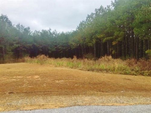 Building Lot For Sale North Pike Sc : McComb : Pike County : Mississippi