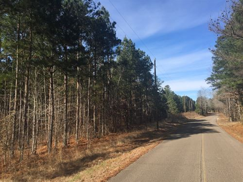 Tract 1561 East - Sealed Bid Sale : Selmer : McNairy County : Tennessee