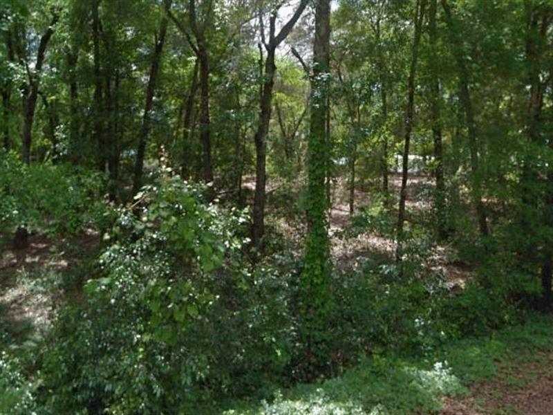 Clay County, Fl $8,500 Reduced : Keystone Heights : Clay County : Florida