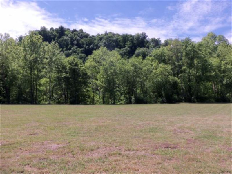 1 Ac River Lot On Cumberland River : Celina : Clay County : Tennessee