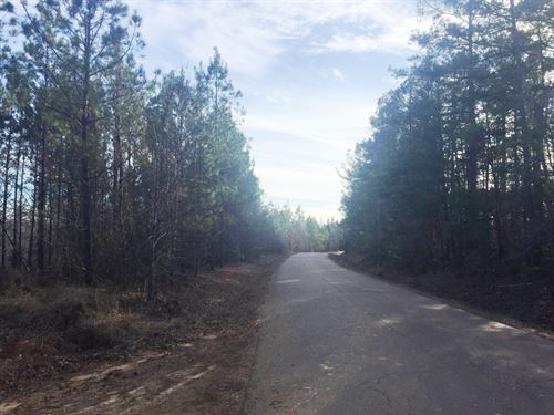 Doyle Road Tract : Middleton : Hardeman County : Tennessee