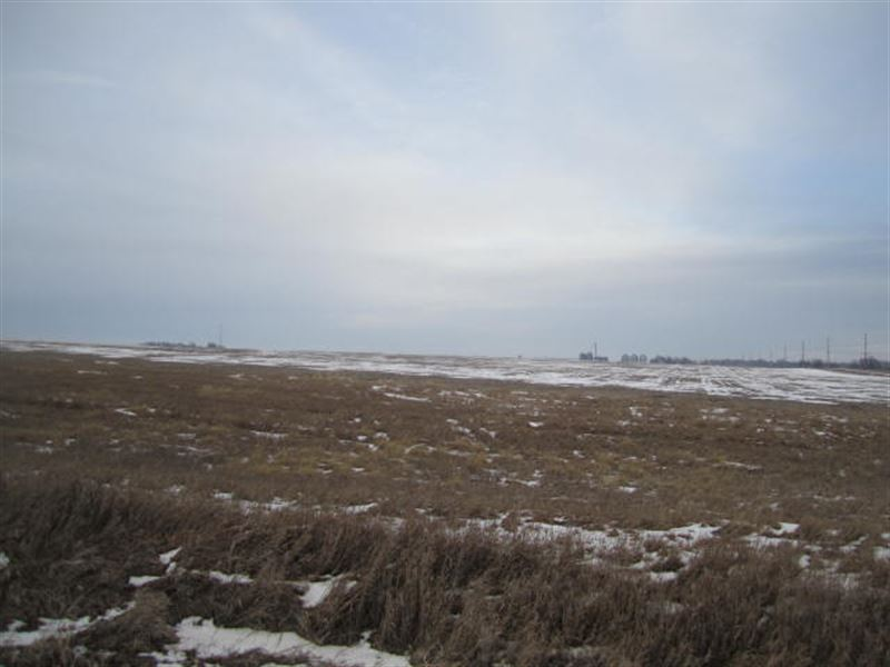 463 Ac M/L Farm Land Auction Ia : Zearing : Story County : Iowa