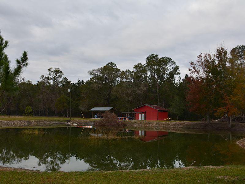 Alachua County Farm : Hawthorne : Alachua County : Florida