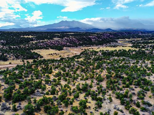 Hunting Property Borders Blm Land : Walsenburg : Huerfano County : Colorado