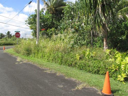 Beautiful Lot In Hawaii Near Beach : Pahoa : Hawaii County : Hawaii
