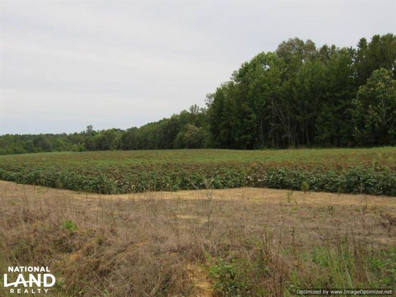Premier Recreational Tract And Crop : Kilmichael : Montgomery County : Mississippi